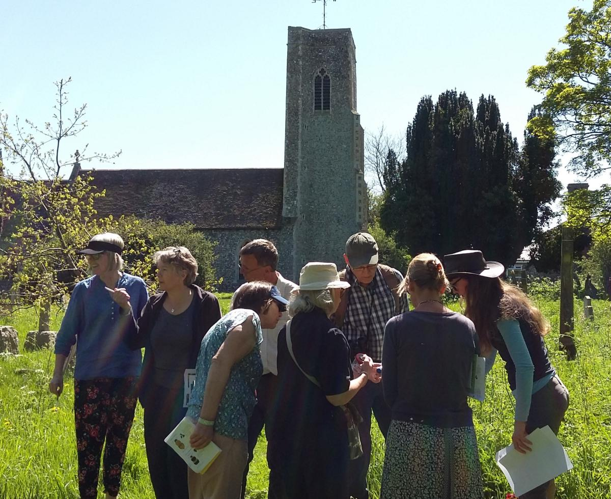 Bee identification workshop, Norfolk Photo credit Lucy Seely